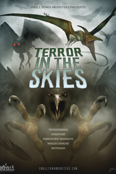 Terror in the Skies DVD - Click to Close